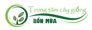 logo website cây giống bốn mùa