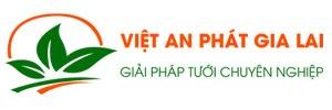 logo website việt an phát